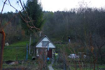 Po dvoch mesiacoch si ideme poň do našej záhrady, aby sa trošku vysušil :)