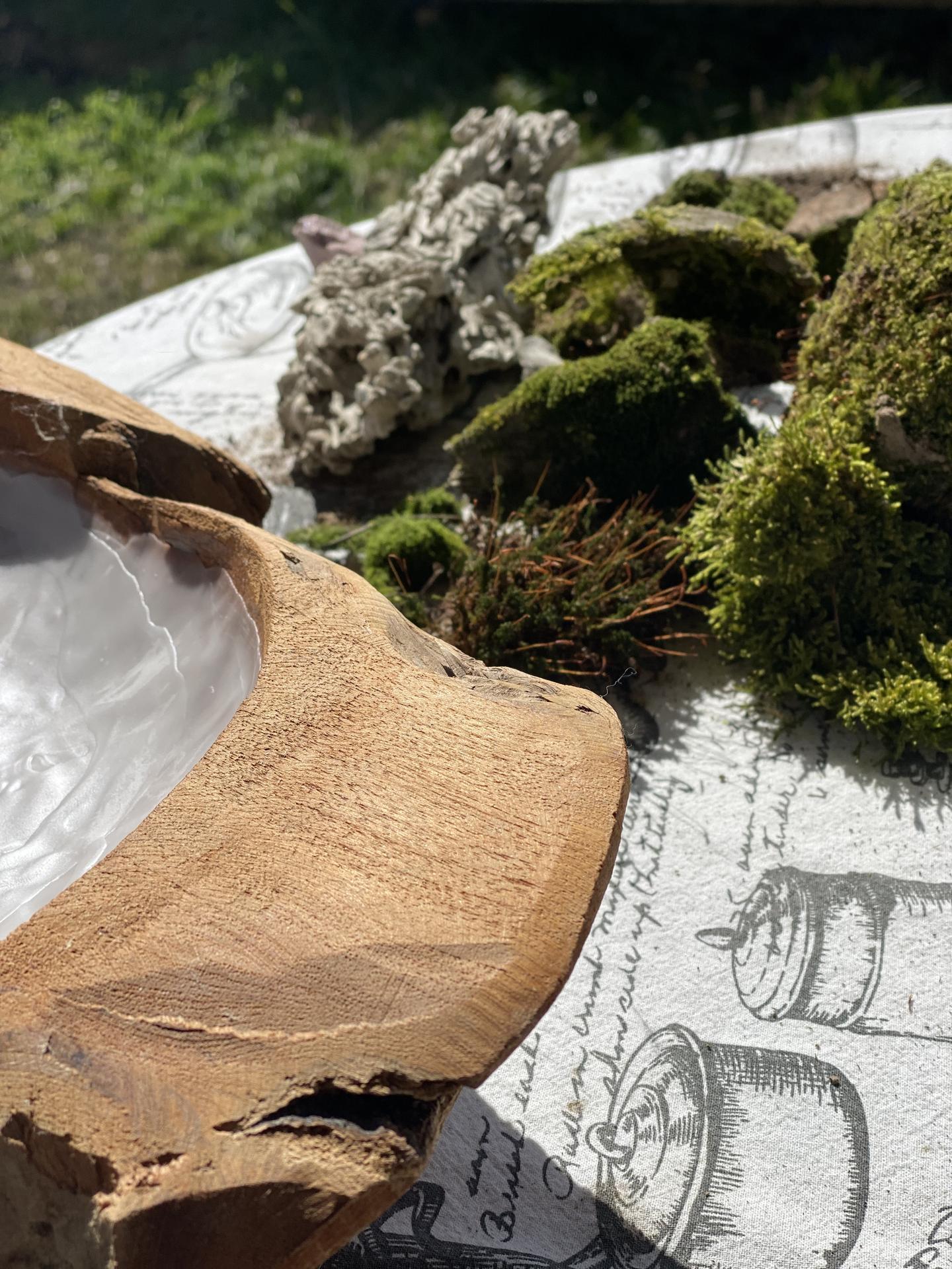 Catfriendly dekorácia - Teaková miska+ kamene obrastené machom na zaťaženie trávy zo záhrady, aby mačky nevytiahli celý trs a nespravili neporiadok...