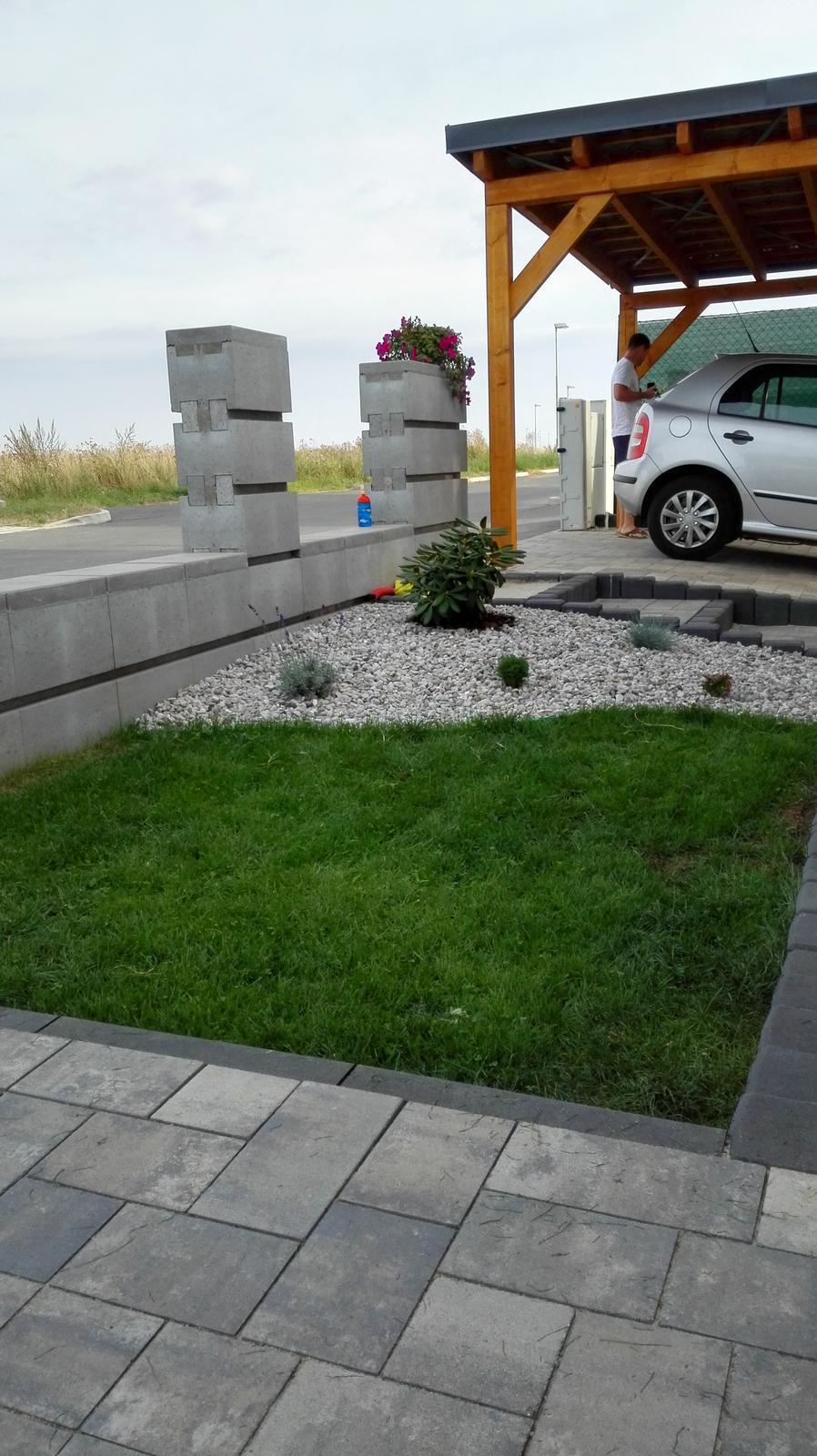 Okolo domu :o) - travička už se zelená :-)