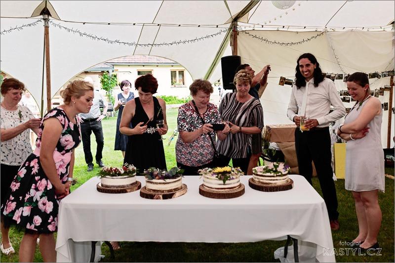 Ta nejpohodovější párty našeho života - Nechtěli jsme riskovat převoz patrového dortu, proto 4 nízké. A když už 4, tak ve stylu jaro, léto, podzim a zima. 2 byly mrkvové, jeden ve stylu míša a posledni piškotový s ovocem. A všechny byly výborné!