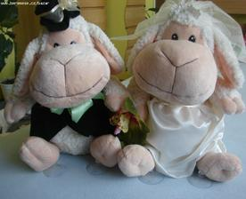 všichni mi říkají ovečko......že bych se své přezdívky nevzdala ani na svatbě?