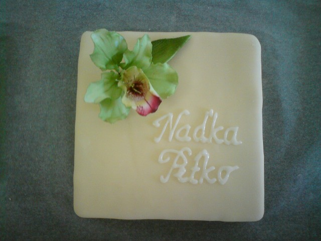 Nadka a Petko 28.5.2011 - nase krasne male torticky. :)