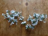 Girlanda květy svatební závoj 1,8m,