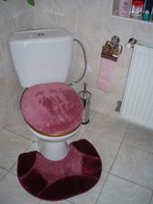 WC v dolnej kúpeľni. Zaujímavé odrazy blesku pri fotení :-)