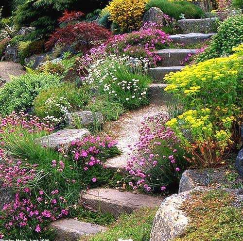 Kouzelná zahrada - Obrázek č. 15