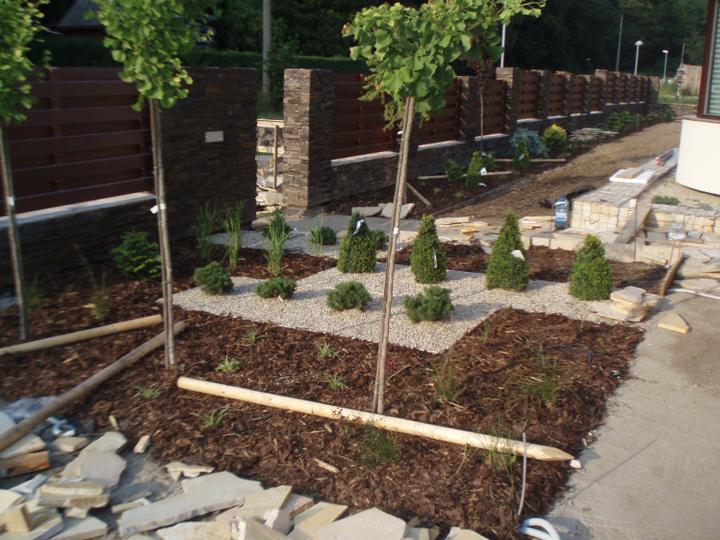 Zahrada - Zahrada se pomalu rysuje