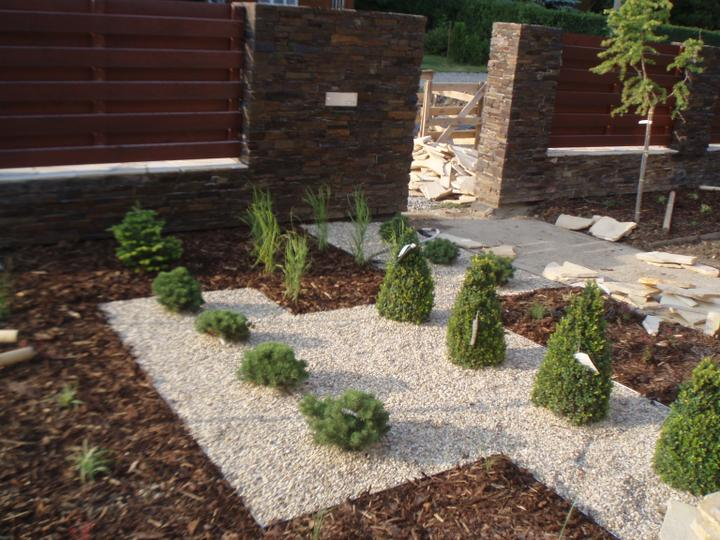 Zahrada - Buxusy se jeste sestrihaji do kulata