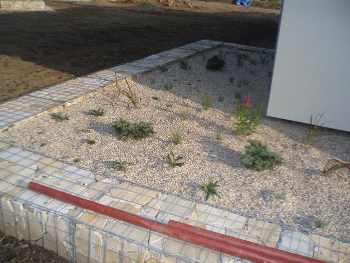 Zahrada - Rostlinky jeste male, z velkych jsme museli ustoupit, cenove se to nedalo a za rok to bud jine :)