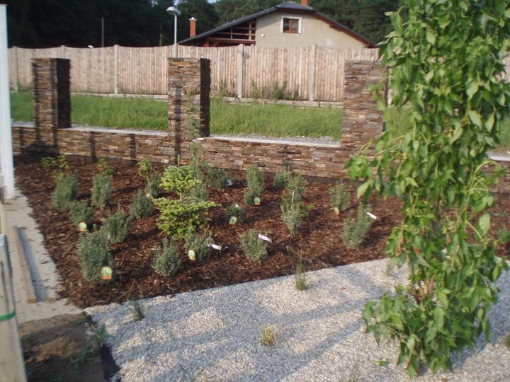 Zahrada - Obrázek č. 37