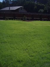 Na polovine pozemku konecne trava! Bude prvni sekani :DDD
