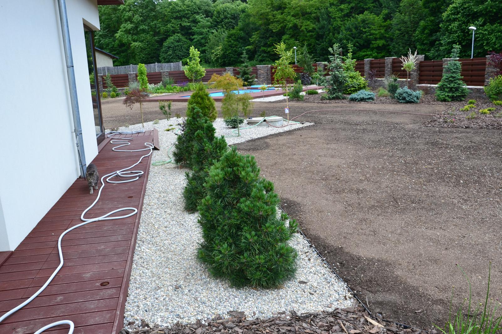 Zahrada - Obrázek č. 105
