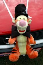 tygr na autě ženicha