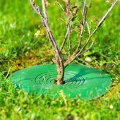 Treeguard chránič stromu ,