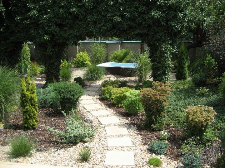 Plány pre našu budúcu záhradu - divoké a krásne