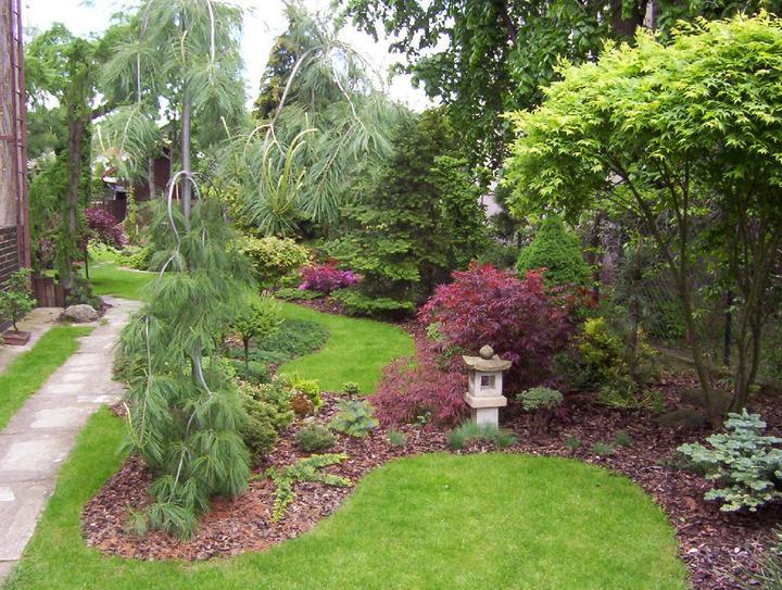 Plány pre našu budúcu záhradu - moj oblúbený javor, mámé jeden doma, má rád slnečné stanovište, ale nie aby nanho slnko celý den pieklo - potom sa mu spália lístky...