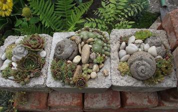 krásne naaranžované skalničky