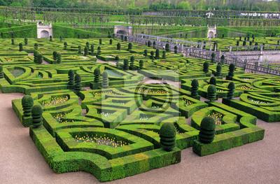 Plány pre našu budúcu záhradu - s krušpánom sa dá doslova čarovať...