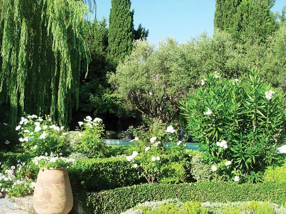 Plány pre našu budúcu záhradu - nádherné celá záhrada - velké stromy, živé plotiky z krušpánu a do doho krásne zakvitnuté oleandre, nemá to chybu!