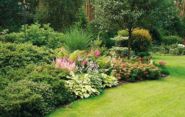 Plány pre našu budúcu záhradu - Obrázok č. 19