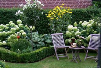 Plány pre našu budúcu záhradu - tak toto je ono - krásne zakvitnuté hortenzie olemované krušpánom - pre mna ideál