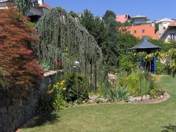 Plány pre našu budúcu záhradu - Obrázok č. 30