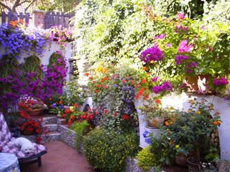 Plány pre našu budúcu záhradu - Obrázok č. 38