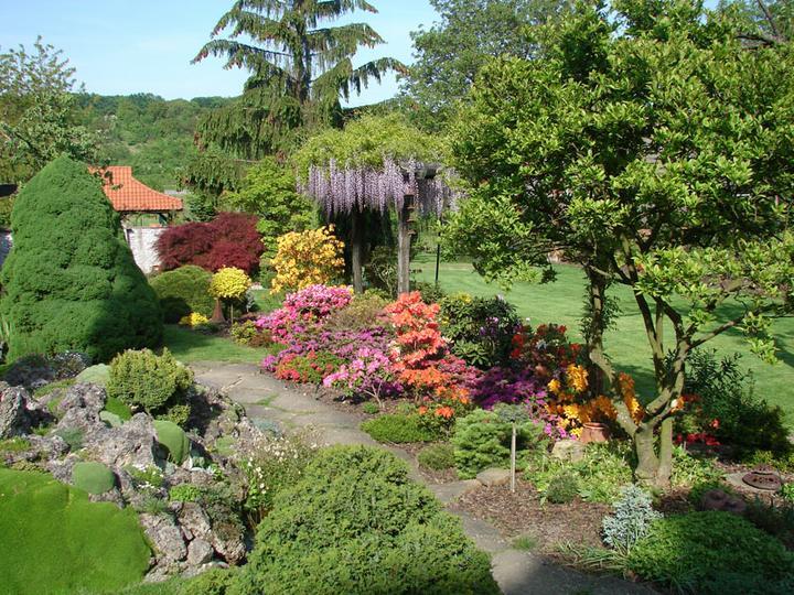 Plány pre našu budúcu záhradu - Obrázok č. 43