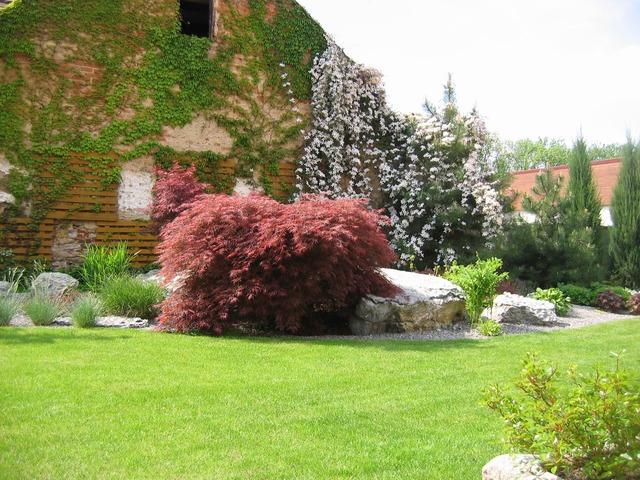 Plány pre našu budúcu záhradu - Obrázok č. 45