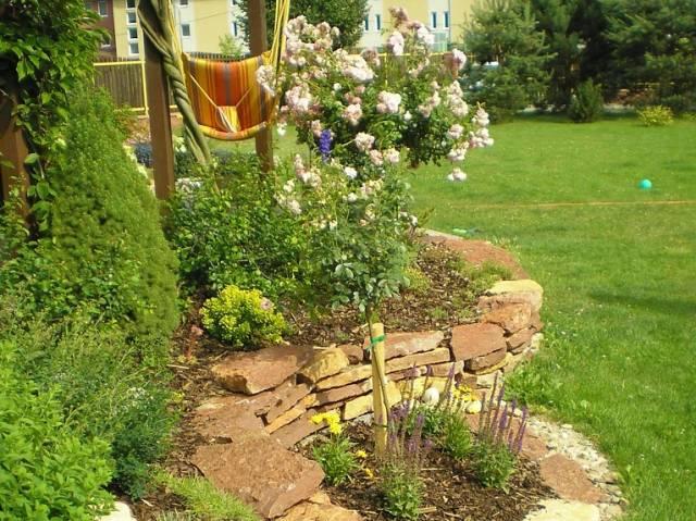 Plány pre našu budúcu záhradu - Obrázok č. 56