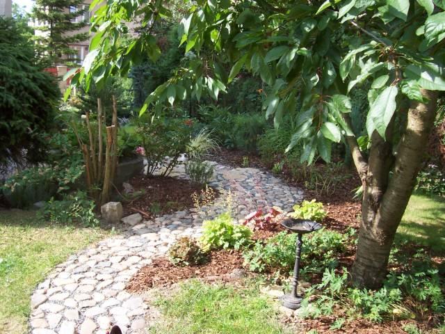 Plány pre našu budúcu záhradu - Obrázok č. 62