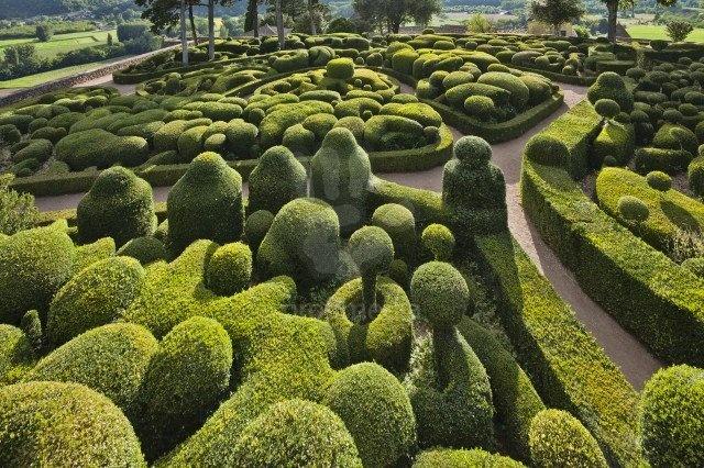 Plány pre našu budúcu záhradu - Obrázok č. 73