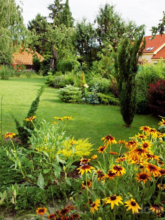 Plány pre našu budúcu záhradu - Obrázok č. 93
