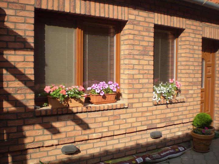 Náš starý domček - na tejto strane mi slnko moc páli... vpredu sú kvetinky ovela krajšie...