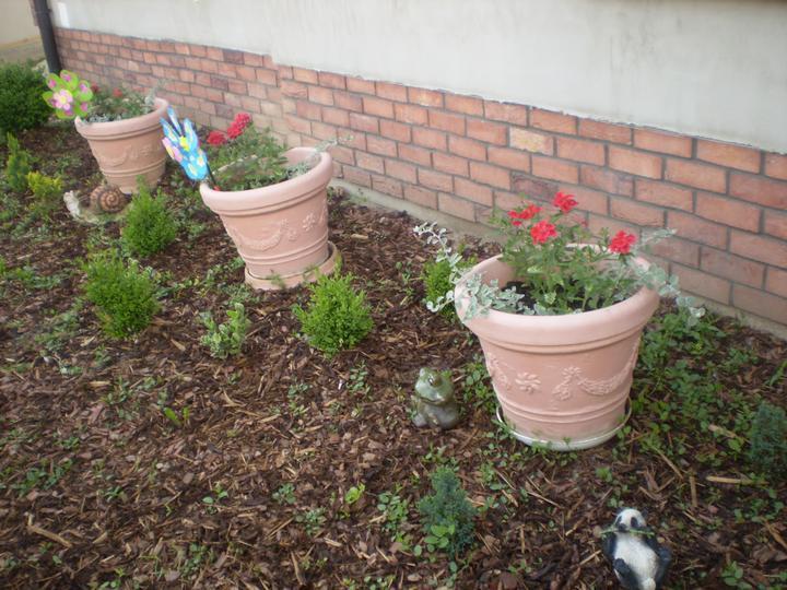 Náš starý domček - chlapci majú po záhrade rozložené všade zvieratká a v kvetináčoch vrtulku - nevadí, hlavne že sa tešia :-)