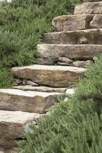 Miluju kámen v zahradě