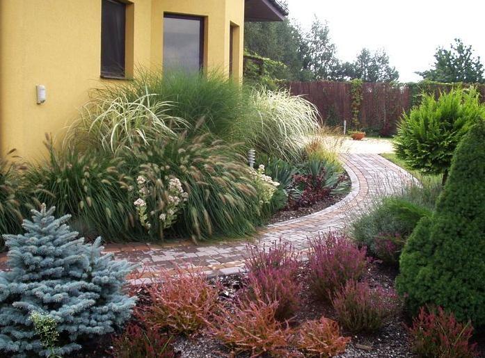 Zahrada - před dům