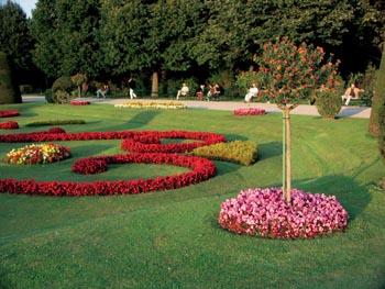 Zahrada - líbí se mi růžové kytičky a v nich stromek