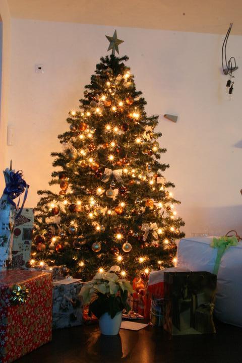 Dekorace, svátky - vánoce 2011