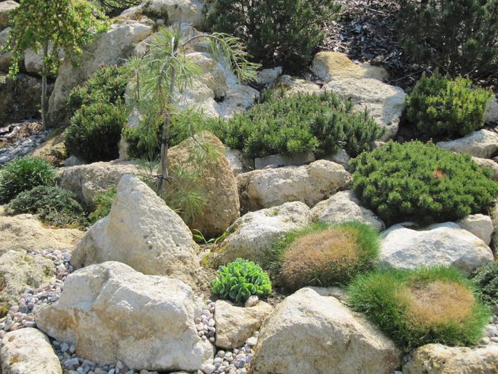 Zahrada - detail osazeni