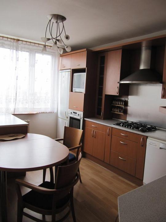 Byt - naše první společné bydlení - naše kuchyn