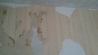 panel, tapeta, zase tapeta, tapeta a aby nebolo málo, tak ešte jedna tapeta...a nakoniec sa rozhodli tú tapety namaľovať :)