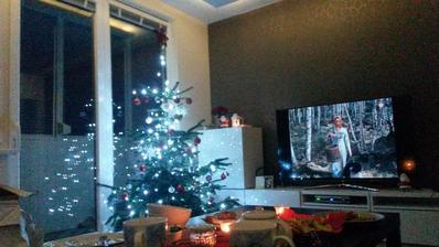 Prvé Vianoce vo svojom :)