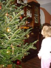 stromcek 2011