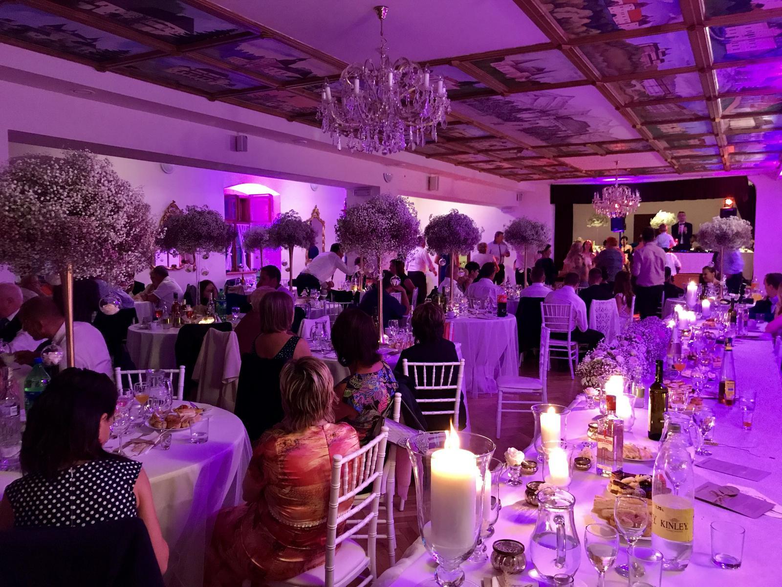 djmike - svadba Kaštieľ Krasňany