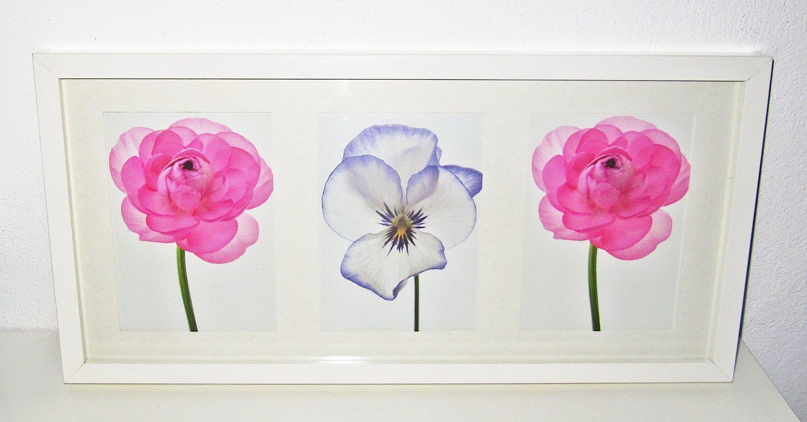 Farebné kvety obraz - Obrázok č. 1