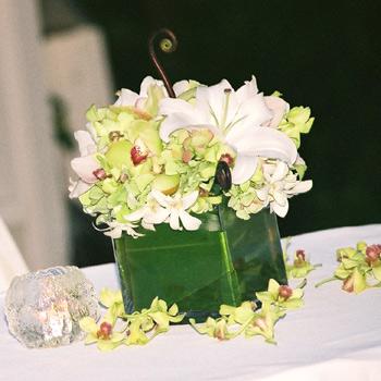 Inšpirácie na prípravu - orchidey