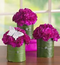 uvidime ci zive kvety alebo iba nejake ikebany