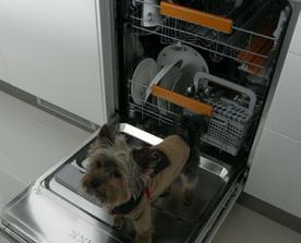 toto sme našli v umývačke :)))