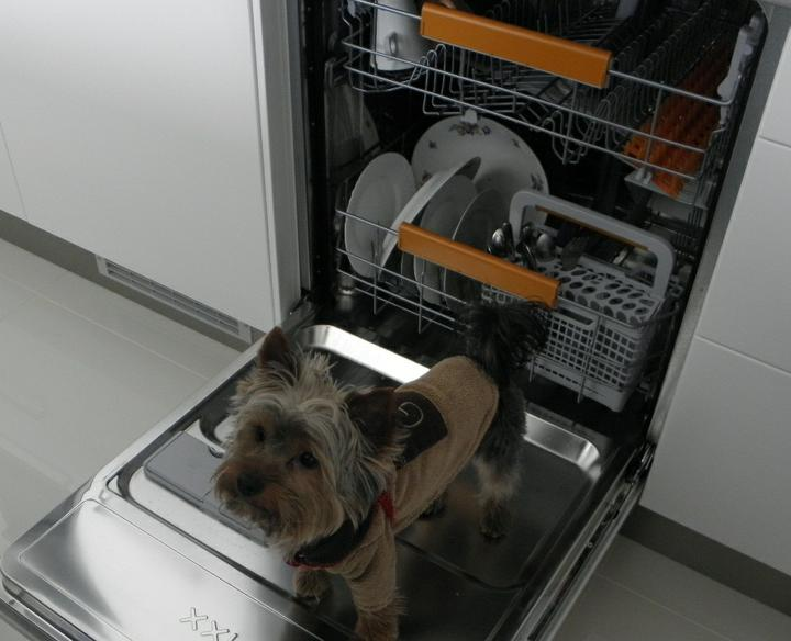 Pomaly dokončujeme... - toto sme našli v umývačke :)))