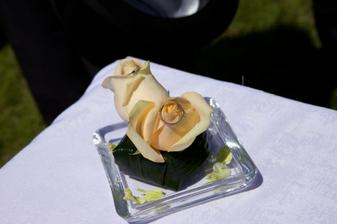 polštářek na prstýnky ze svatby mé kolegyně v práci